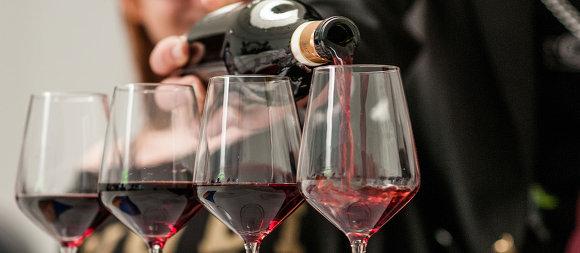 2019년도  알바 VINUM 와인 & 푸드 축제