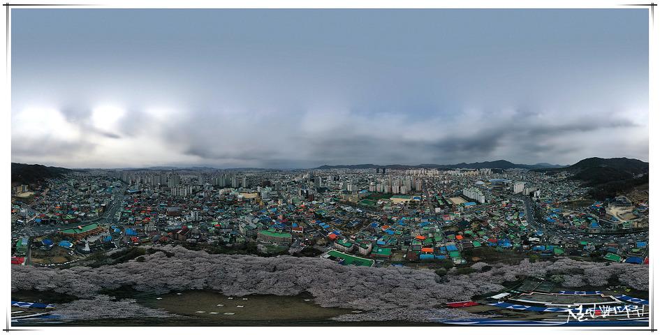테미공원봄꽃축제.벚꽃 360 VR 파노라마(MAVIC2PRO.대전시)